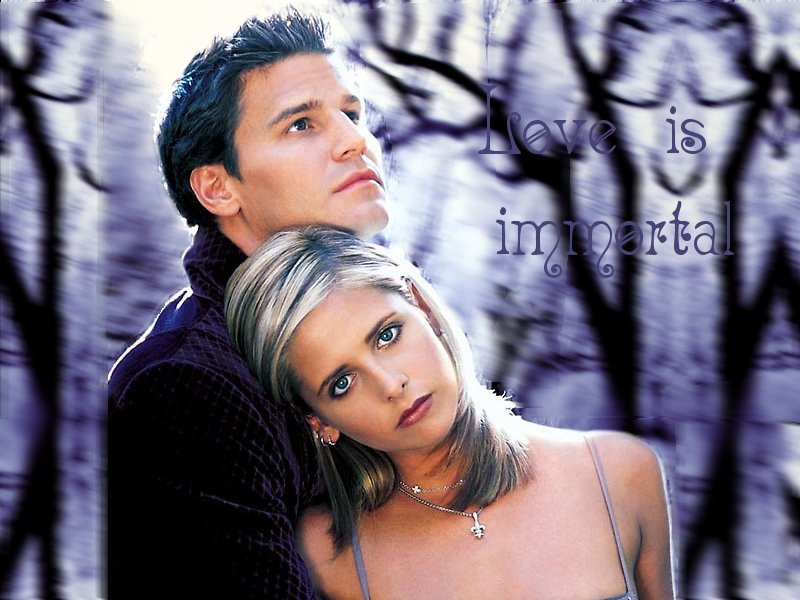 Fiction fan adult and Buffy angel